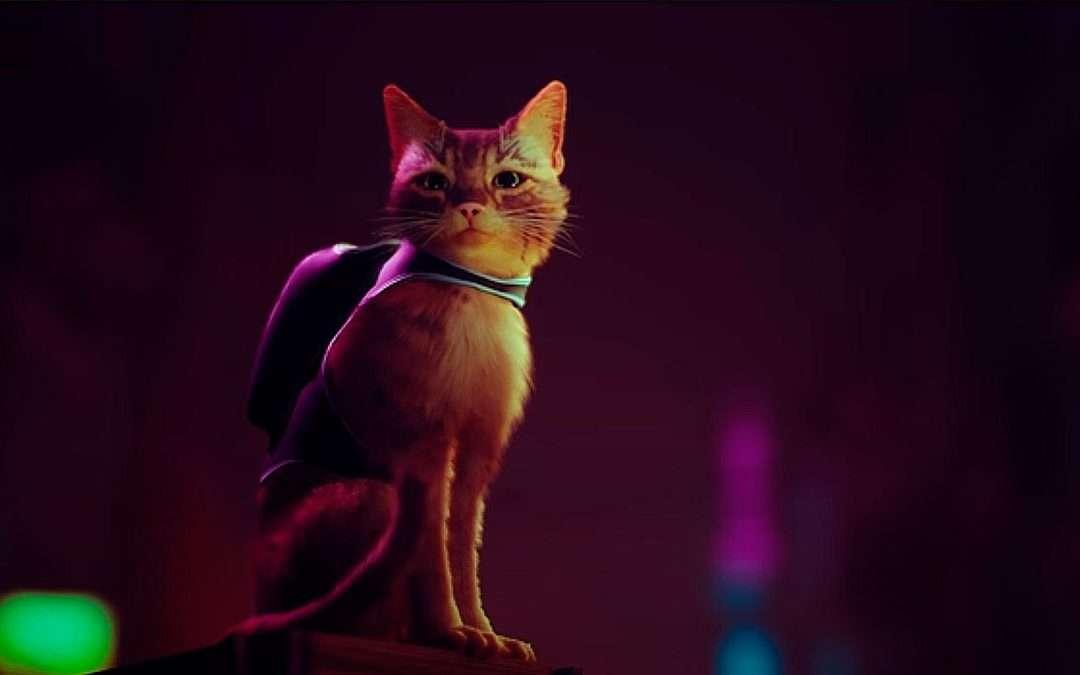 Stray, videojuego de un gato