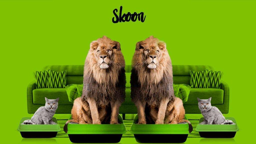 Skoon, Arena premium para gatos