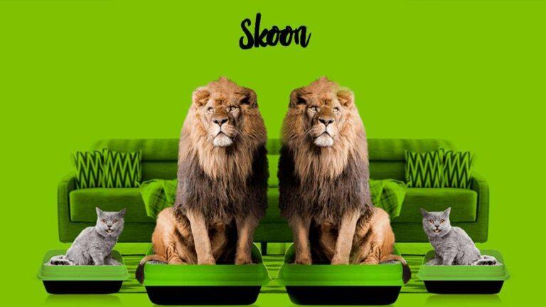 Arena para gatos Skoon | ¿Es tan buena como dicen? ¿Dónde comprarla? te decimos su precio