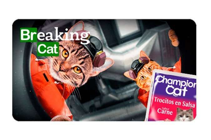 Breaking Cat, parodia de Braking Bad, de Catflix