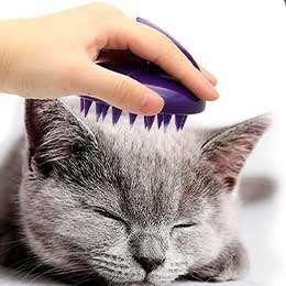 Cepillos para gato
