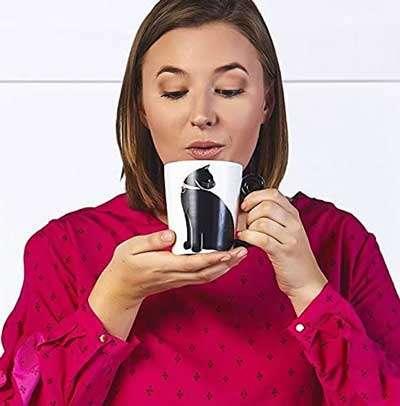 Tazas de gato, el regalo perfecto, ideal para home office