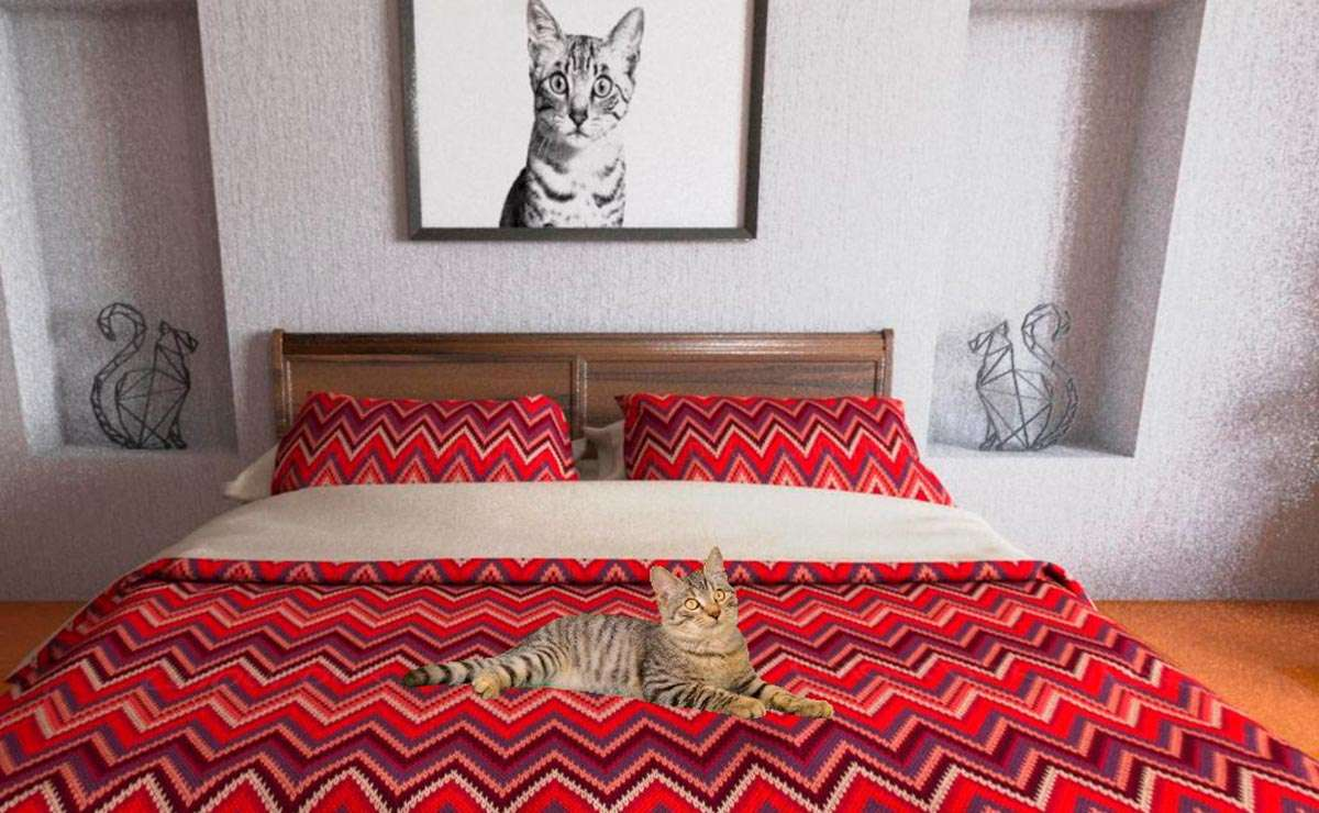 The cat house by royal canin